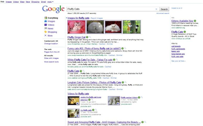 Google search results for 'fluffy cats'